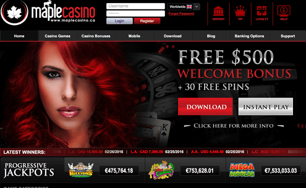 Maple Casino Details for Real Money Gamers